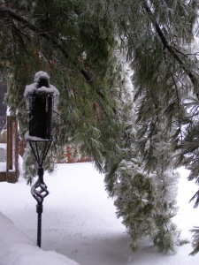 The Lone Sentinel - a tiki torch, a reminder of summer past, stands guard next to the limbs of a pine tree weight down by ice and snow.